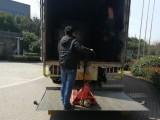 上海奉贤区尾板车出租拉货专业展会运输机器设备运输