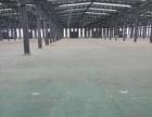 大江东单层19000平米厂房仓库出租(不分租)