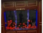 江阴鱼缸定做智能创意水族箱
