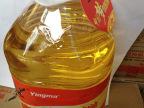新油上市 推荐超市最爱  人人喜欢 好用实惠 鹰唛5L食用调和油