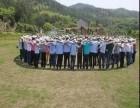 广东户外拓展亲子活动一日游年会组织会议拓展培训企业团队培训