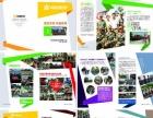 专业承接喷绘制作、公司简介彩页、宣传单印刷等