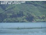 捕鱼网底层鱼网充气抬网