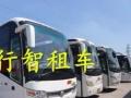 京 牌租车、临时租车、长期包车、豪华大巴车出租