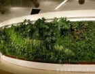 北京定做植物墙厂家