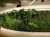 綠植墻定做北京仿真植物墻廠家