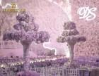 漯河婚礼策划共青团婚庆礼仪创意婚礼比翼双飞