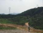 出租融水适合种果树的530亩缓坡山地