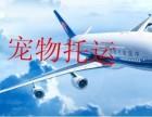 黄浦区圆通快递专业提供私人物品运输家具电器快递