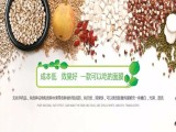 五谷果蔬美容面膜加盟