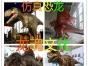 济宁六一儿童节火爆来袭较新恐龙展览展示基地