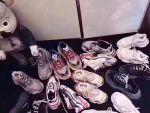 莆田鞋厂运动鞋批发,一件代发,微商起步技巧,招总代理