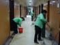重庆新桥沙坪坝区开荒保洁重庆家政服务