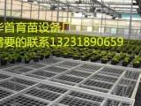 苗床网移动苗床华首育苗设备厂专业生产销售