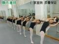 幼儿园、舞蹈房安全环保PVC地板