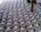 娃娃鱼鱼苗市场价格_广东创新水产养殖场专业供应观赏鱼苗