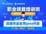 应届大学生学Java开发2-4个月快速逆袭提升实战实练好就业