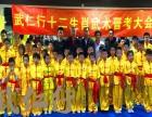 上海传统武术少儿表演队