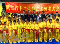上海散打周末培训班