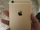 苹果六plus出售,国行金色16g,成色94新,