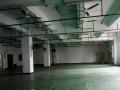 坂田南坑原房东带装修1100平厂房,电商的孵化地