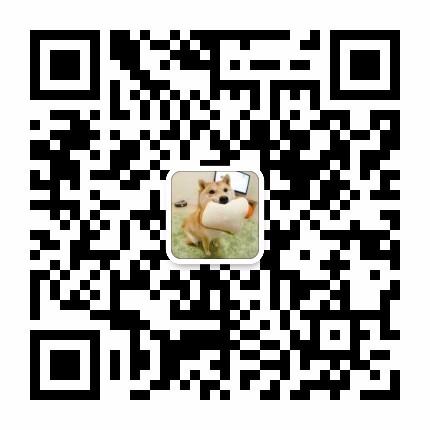 买狗找我 锦州哪里有卖纯种博美,博美多少钱?