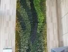 北京植物墙定做绿植墙价格