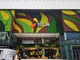 广州绿大师仿真植物墙鲜花墙上门安装与施工