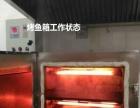 洪山区厨具店供应智能烤鱼炉 商用智能烤鱼烤箱市场价