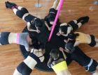 西昌钢管舞零基础专业培训 西昌钢管舞培训学校