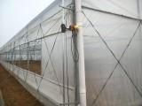 河南奧農苑廠家承建薄膜溫室