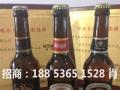 啤酒代理,啤酒招商,啤酒批发,啤酒加盟,枸杞啤酒