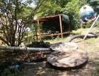苏州沧浪区环卫所抽粪 清理化粪池抽污水