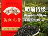 特级英德红茶英红九号罐装茶叶红茶批发广东特产厂家直销