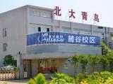 长沙北大青鸟网络工程师IT计算机java编程UI平面设计培训