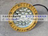 免维护防爆灯 防爆LED照明灯 HRD9