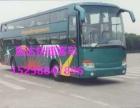 从~乐清到郑州的卧铺汽车+(15258847896)+汽车查
