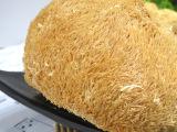 福建特级猴头菇 个大质好新货 食用菌干货煲汤料批发500克