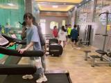 江门音乐艺考培训-音乐艺考统考校考集训