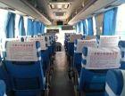 天津欣成旅游包车公司,旅游包车价格便宜,车型全