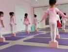 海门市区少儿舞蹈培训中国舞启蒙 考级 民族舞表演