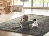小帥的五代教育機器人有什么功能