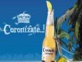 科罗娜啤酒 科罗娜啤酒诚邀加盟