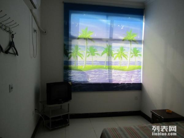 爱情公寓 1室 0厅 22平米 整租