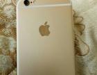 卖苹果手机金色和玫瑰金的全网通的几款金色的手机价格不贵