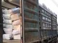 高价回收库存服装,工厂尾单,淘宝、商场下架尾货