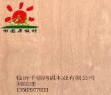 山东家具板多层生态板临沂板材厂家