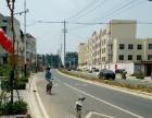 广志学校旁边 商业街卖场 150平米