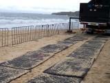 沧州聚乙烯铺路板 草坪工地专用铺路板厂家价格