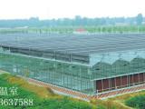 智能玻璃温室价格范围 玻璃大棚价格